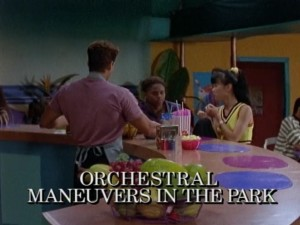 Orchestral Maneuvers In The Park