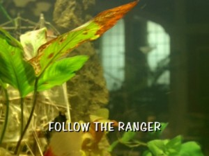 Follow The Ranger