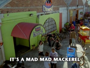 It's A Mad Mad Mackerel