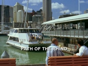 Path Of The Rhino