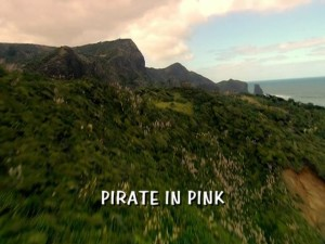 Pirate In Pink