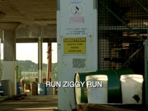 Run Ziggy Run