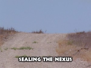 Sealing The Nexus
