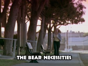 The Bear Necessities