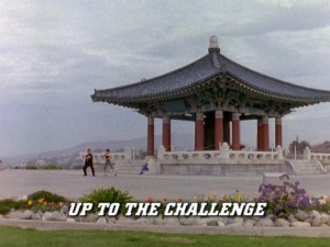 Up To The Challenge