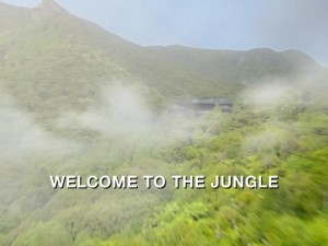 Welcome To The Jungle Part 1